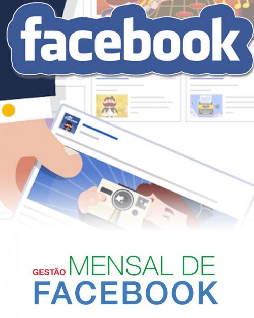 gestao_mensal_de_facebook