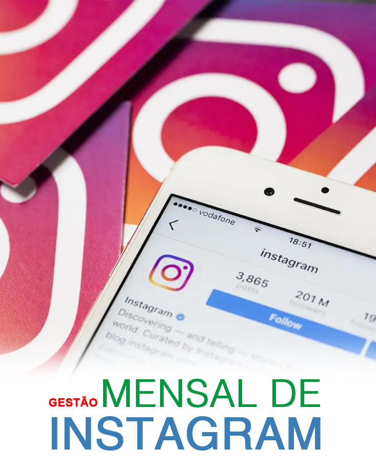 gestao_mensal_de_instagram